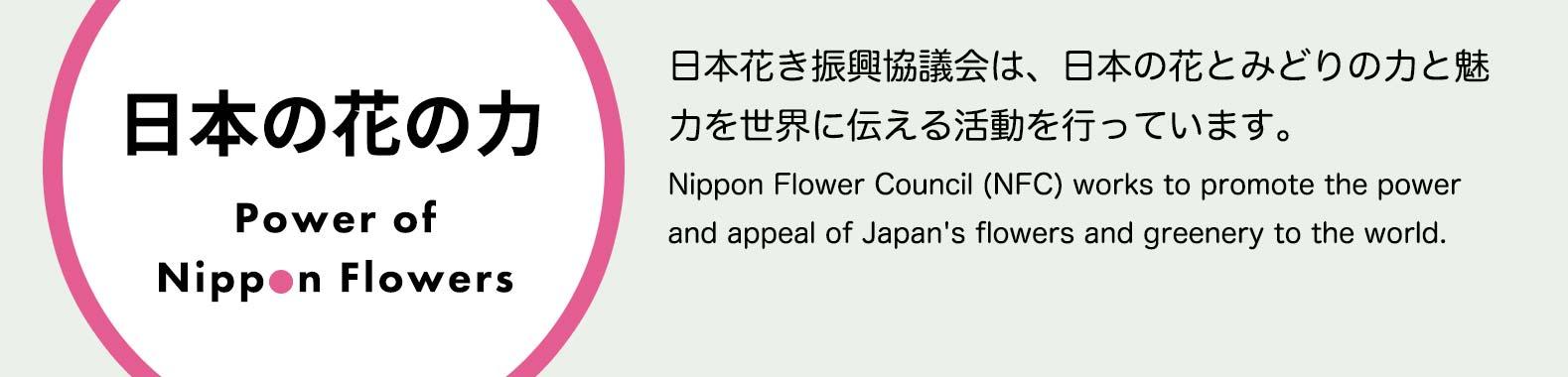 日本の花の力 Power of Nippon Flowers 日本花き振興協議会は、日本の花とみどりの力と魅力を世界に伝える活動を行っています。Nippon Flower Council (NFC) works to promote the power and appeal of Japan's flowers and greenery to the world.